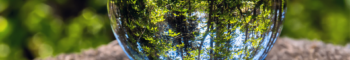 Cristaux de Plantes -  - 55100 - Verdun